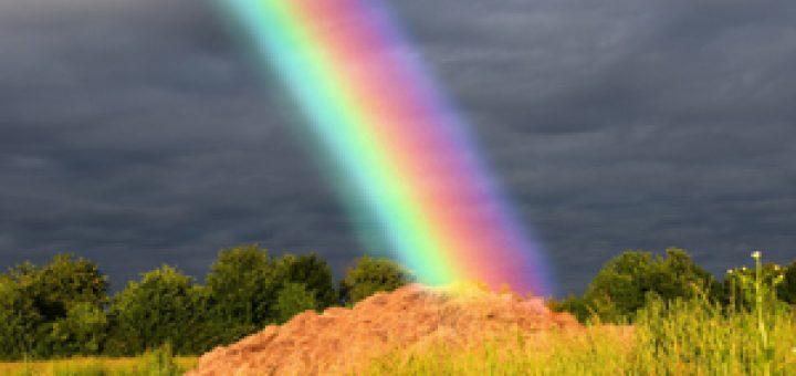 rainbow-dung-Noah-ark-sea-art-satire-comedy-humor