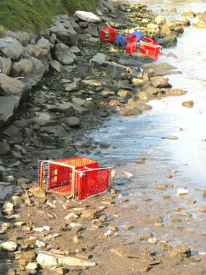 trolley shopping cart art beach sunbathers